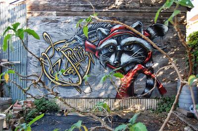 Oakland Raccoon Writer.