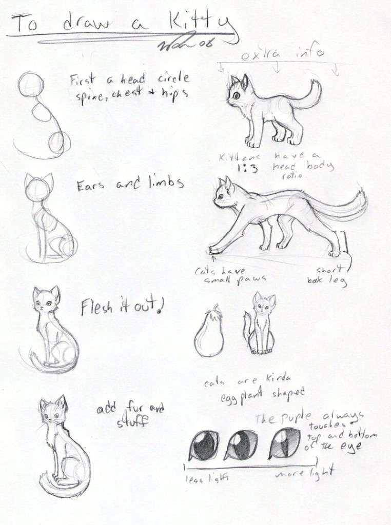 Cat_tutorial_by_FrostDragonVacu