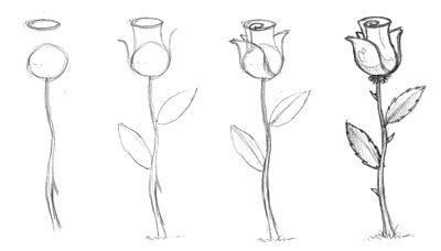 046_draw_rose