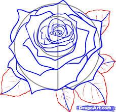kreslenie ruže ako tutorial