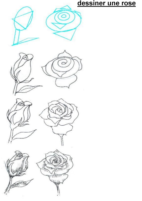 rose-drawings-how-to-draw-a-rose