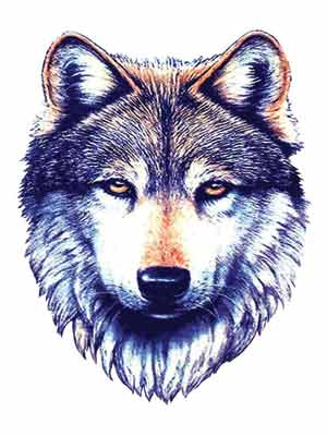 awesome-wolf-head-tattoo-design