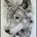 ako kreslit vlka tutorial/navod