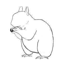Draw Squirrel (6)