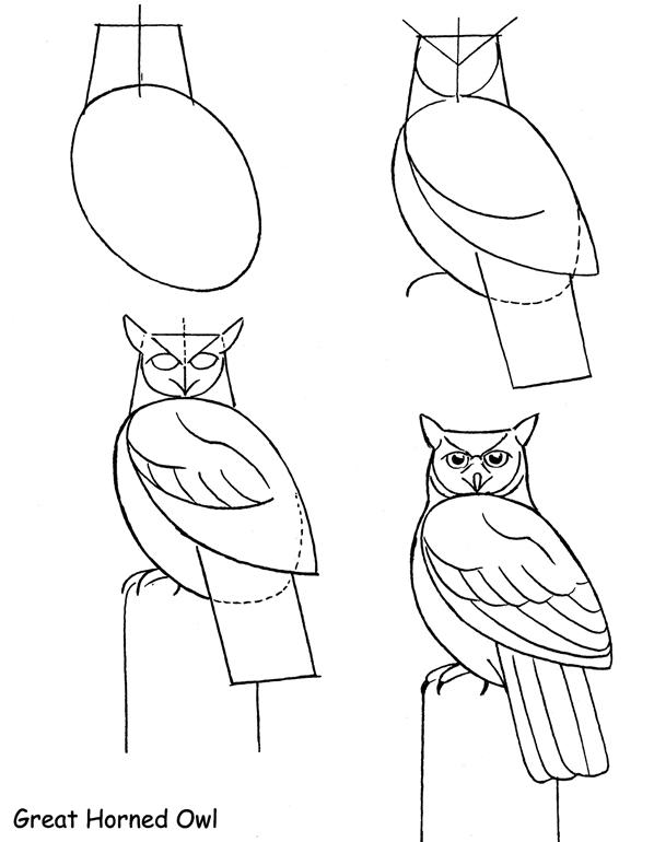 drawowl1
