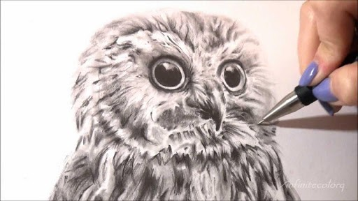 how-to-draw-an-owl-1-0-s-307x512