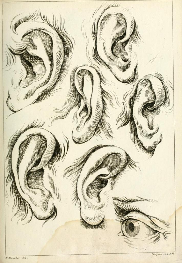 ako kreslit ucho