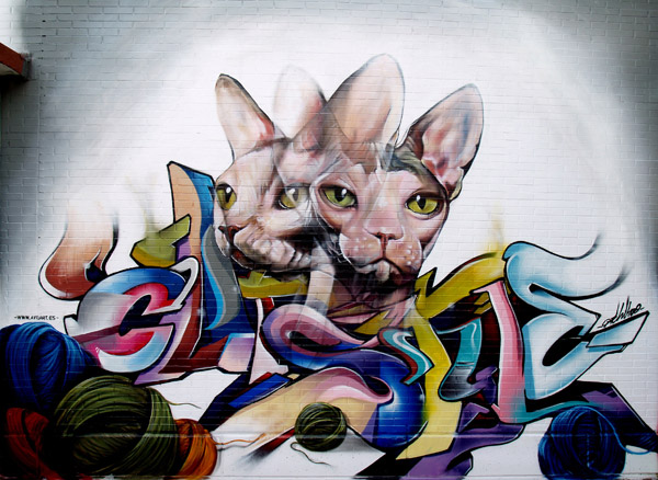 grafitty cat/macka