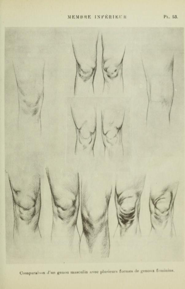 sko kreslit kolena/how to draw knees