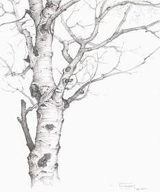 ako kreslit strom