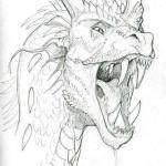 hlava draka kreslena