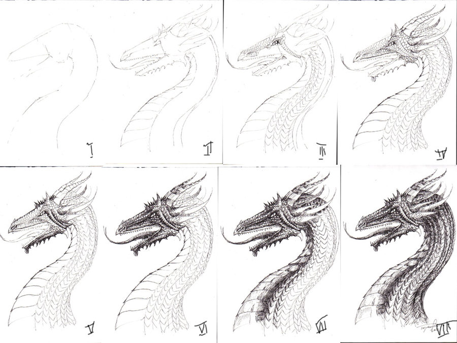 how_to_draw_a_dragon__by_me_by_tajrandie-d338lbi